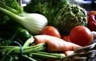 vegetables-594175_1920